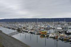 Homer Aaska Harbor royaltyfri fotografi