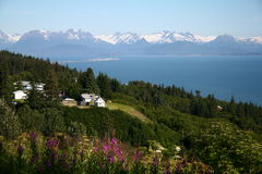 Homer, AK royalty free stock image