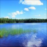 Homer Lake Vista pittoresque - Minnesota du nord-est Photos libres de droits