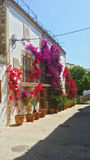 Homes decorated with flowers in Ibiza, Spain Stock Photography