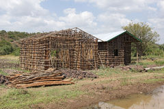 Homes, Great Rift Valley, Ethiopia, Africa Royalty Free Stock Photo