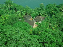 Homes in jungle. Aerial view of traditional homes surrounded by dense jungle with ocean in background Stock Image