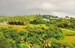 Homes in lush green hill Royalty Free Stock Images