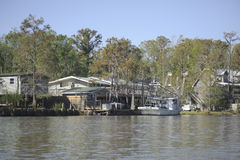 Homes in the swamp Royalty Free Stock Photos