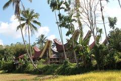 Homes in tana toraja, Tongkonan. Sulawesi Royalty Free Stock Photography