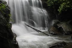Homestay de Chingaara - Coorg Foto de Stock Royalty Free