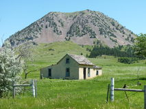 Homestead at base of Bear Butte. An old abandoned homestead at the base of Bear Butte in the Black Hills of South Dakota Stock Photos