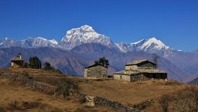 Homestead in the Himalayas, mount Dhaulagiri royalty free stock image