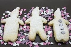 Homestyle biscuits. Homemade cookies in the traditional style decorated in different ways royalty free stock photos