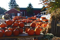 Hometown Halloween Stock Photos