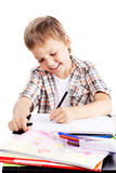 Homework boy Stock Images