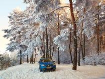 Homiel', Bielorussia - 24 gennaio 2018: un'automobile blu RENAULT LOGAN ha parcheggiato nella foresta dell'inverno Fotografia Stock