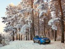 Homiel', Bielorussia - 24 gennaio 2018: un'automobile blu RENAULT LOGAN ha parcheggiato nella foresta dell'inverno Immagine Stock Libera da Diritti