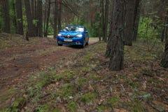 HOMIEL', BIELORUSSIA - 24 MAGGIO 2017: L'automobile blu di RENO LOGAN ha parcheggiato in un'abetaia scura Immagine Stock Libera da Diritti
