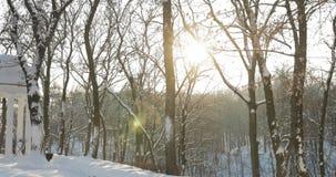 Homiel', Bielorussia Neve coperta gazebo nel parco della città di Snowy durante il Sunny Winter Evening archivi video