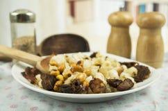 Hominy and toasted corn nuts  mote con chicharron Royalty Free Stock Photo