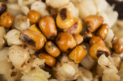 Hominy and toasted corn nuts mote with tostado Stock Image