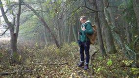 Homme âgé moyen sur un itinéraire aménagé pour amateurs de la nature écologique par une forêt d'automne en parc naturel banque de vidéos