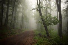 Homme étrange marchant sur la route dans la forêt avec le brouillard Photographie stock libre de droits