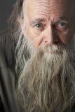 Homme aîné avec la longue barbe Photographie stock libre de droits