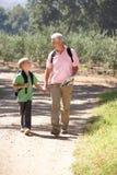 Homme aîné et fils marchant dans le pays Photos stock