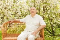 Homme aîné près des arbres fleurissants Photographie stock libre de droits