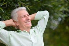 Homme aîné réussi Images libres de droits