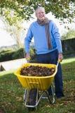 Homme aîné rassemblant des lames d'automne photo stock