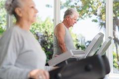 Homme aîné s'exerçant dans le club de santé Photo stock