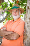 Homme aîné - sage et sérieux Photo stock