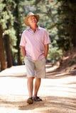 Homme aîné sur marcher le long d'une voie de pays Photographie stock libre de droits