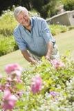 Homme aîné travaillant dans le jardin Photos stock