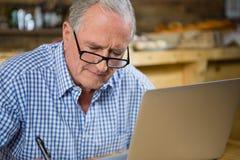 Homme aîné travaillant sur l'ordinateur Photographie stock libre de droits