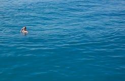 Homme actif dans des lunettes de natation nageant en mer photos libres de droits