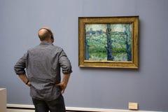Homme admirant une photo photographie stock