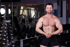 Homme adulte déchiré fort avec de l'ABS parfait, épaules, biceps, tri image stock