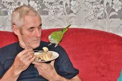 Homme alimentant le perroquet vert en tant que membre de la famille avec l'amour animal Images libres de droits
