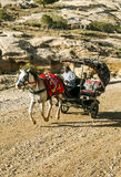 Homme arabe conduisant un chariot images stock