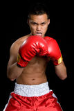 Homme asiatique de boxe Photos libres de droits