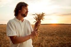 Homme avec des oreilles de blé sur le fond du champ Images stock
