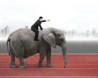 Homme avec diriger l'équitation de geste de doigt sur l'éléphant de marche Photo libre de droits