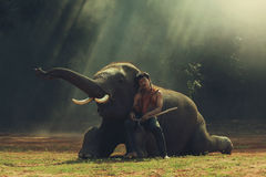 Homme avec l'éléphant Photos stock