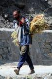 Homme avec l'herbe Photos libres de droits