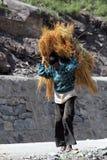 Homme avec l'herbe Photographie stock libre de droits