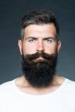 Homme avec la barbe Images stock