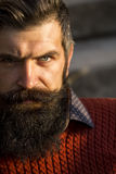 Homme avec la longue barbe images libres de droits