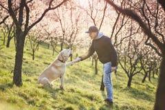 Homme avec la nature de chien au printemps Photographie stock libre de droits
