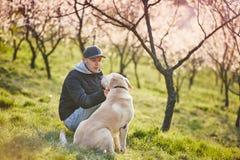 Homme avec la nature de chien au printemps Image stock