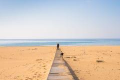 Homme avec le chien marchant sur la plage tropicale Photo libre de droits