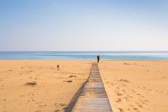 Homme avec le chien marchant sur la plage tropicale Photographie stock
